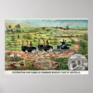 Vintage Columbus Buggy Companyのオーストラリア人のだちょう ポスター