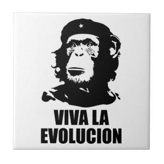 Vivaのla Evolucion タイル