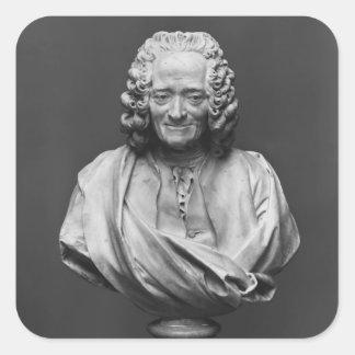 Voltaireのバスト スクエアシール