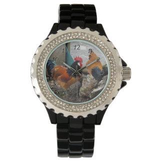 Vorwerksの鶏の組、オンドリおよび雌鶏の食べ物 腕時計