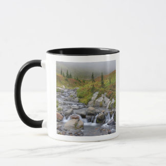 WAのレーニア山国立公園、イーディスの入り江 マグカップ