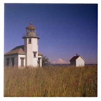 WAのMauryの島、ポイントロビンソンの灯台、 タイル