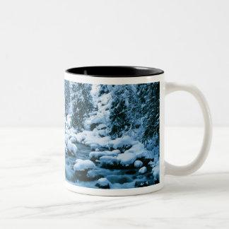 WAのWenatcheeの国有林、滝 ツートーンマグカップ
