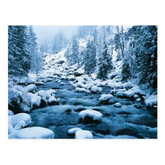WAのWenatcheeの国有林、滝 ポストカード