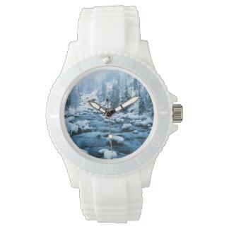 WAのWenatcheeの国有林、滝 腕時計