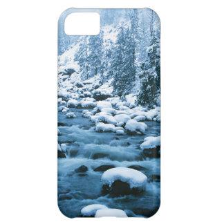 WAのWenatcheeの国有林、滝 iPhone5Cケース