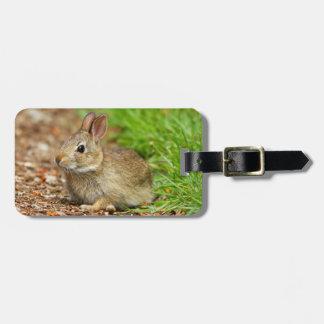 WA、Redmondの東Cottontailのベビーのウサギ ラゲッジタグ