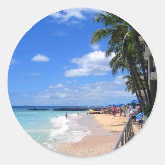 Waikikiのビーチ、オアフ、ハワイ ラウンドシール