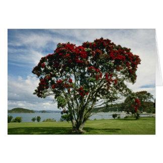 Waitangiのクリスマスツリー、ニュージーランドの花 カード