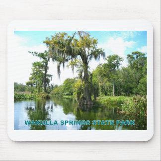 WAKULLAは公園-フロリダ州立はねます マウスパッド