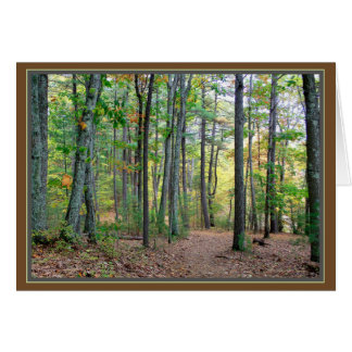 Waldenの森: 朝の歩行は天恵です カード