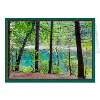 Waldenの池: 氷の城砦の入江 カード