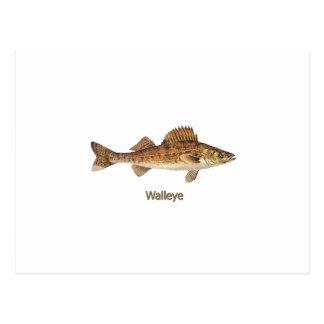 Walleyeの芸術 ポストカード