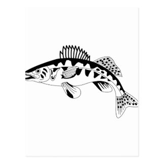 Walleyeの輪郭 ポストカード