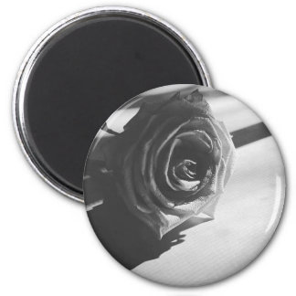 Wanderwildの小型磁石 マグネット