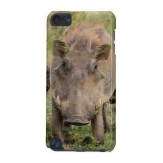 Warthogの3匹のコブタは彼らの母で授乳します iPod Touch 5G ケース