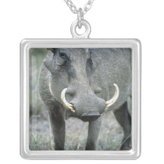 WarthogのPhacochoerusのafricanusの)マサイ語マラ シルバープレートネックレス
