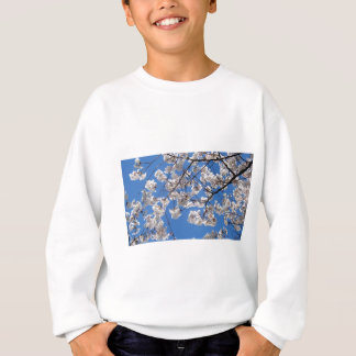 Washington D.C.の桜 スウェットシャツ