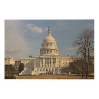 Washington D.C.国会の建物 ウッドウォールアート