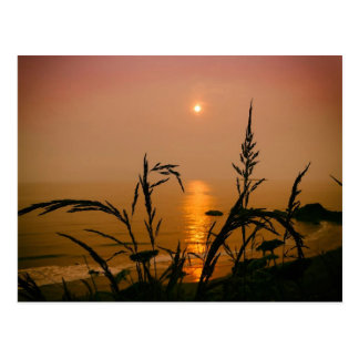 Washington State Postcard- Sunset Over the Ocean ポストカード