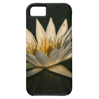 Waterlilly 7 iPhone 5 case