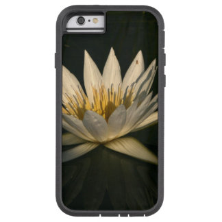 Waterlilly 7 iPhone 6 タフ・エクストリームケース