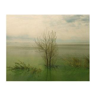 Waterscapeの落ち着いた景色 ウッドウォールアート