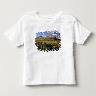 WatertonのArrowleafのbalsomrootの野生の花 トドラーTシャツ