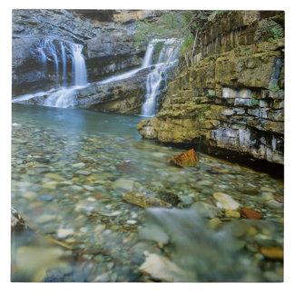 Waterton湖の国立公園のカメロンの滝 タイル
