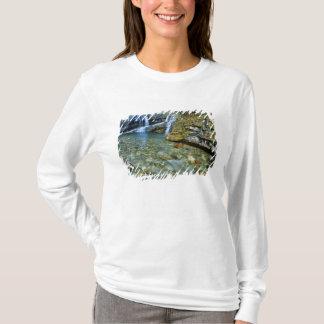 Waterton湖の国立公園のカメロンの滝 Tシャツ