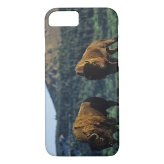 Waterton湖の国立公園のバイソンの雄牛 iPhone 8/7ケース