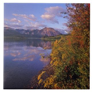 Waterton湖の国立公園2のMaskinonge湖 タイル
