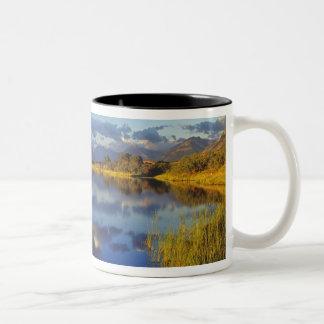 Waterton湖の国立公園3のMaskinonge湖 ツートーンマグカップ