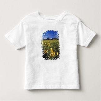 Waterton 2のArrowleafのbalsomrootの野生の花 トドラーTシャツ