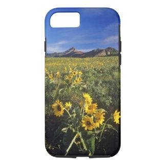 Waterton 2のArrowleafのbalsomrootの野生の花 iPhone 8/7ケース