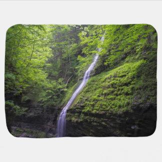 Watkinsの谷間、NYの滝 赤ちゃん 毛布