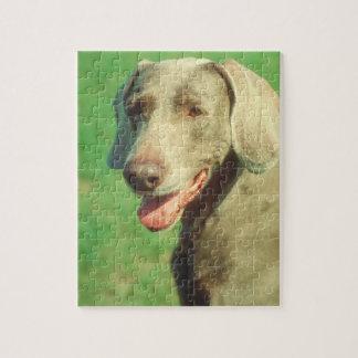 Weimaraner犬のパズル ジグソーパズル