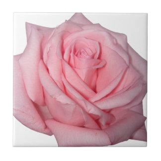 Wellcodaのピンクのバラのロマンチックなフラワーパワー タイル