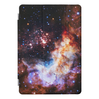 Westerlund 2 iPad proカバー