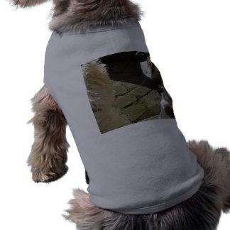Westieおよびビーグル犬-最も最高のな小犬の友人 ペット服