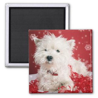 Westieの雪片の休日のデザイン マグネット