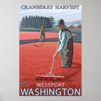 WestportのWashingtonCranberryの沼地の収穫 ポスター