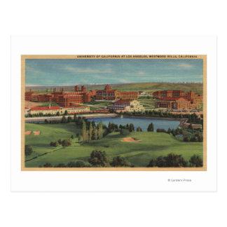 Westwoodの丘、カリフォルニア- U.C.L.A.のキャンパスの眺め ポストカード