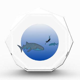 Whalesharkおよび自由なDivier 表彰盾