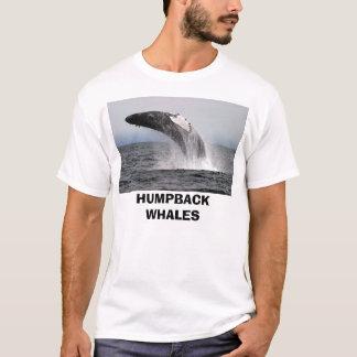 whaleza、ザトウクジラ tシャツ