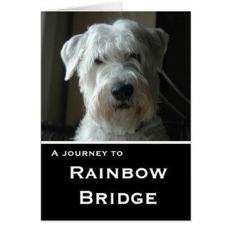 Wheaten Terrier sympathy card カード