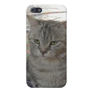 whiskis猫 iPhone 5 case
