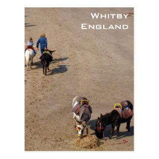 Whitbyのビーチ、ノースヨークシャー州のろばの乗車 ポストカード