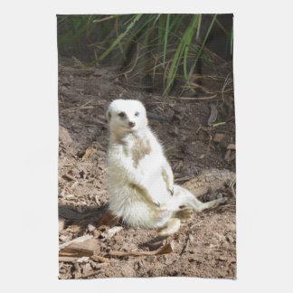 White_Meerkat_Grins、_Tea_Towel. キッチンタオル
