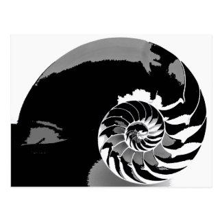 White_Spiral_by_Red_Camera 3 ポストカード